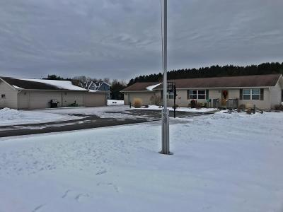 Tomahawk WI Single Family Home For Sale: $219,900