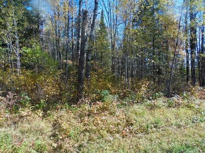 Oneida County Residential Lots & Land For Sale: On Willow Rd