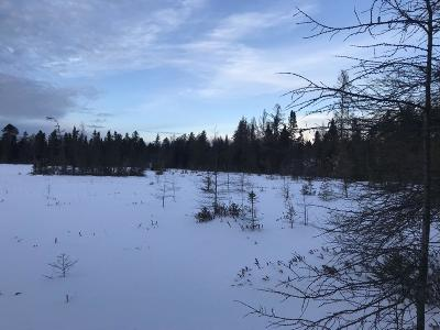 Residential Lots & Land For Sale: On Tamarack Rd #Acreage