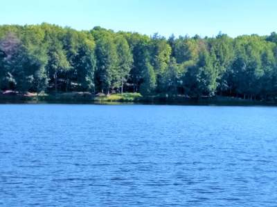 Residential Lots & Land For Sale: 19103 Fish Hawk Rd