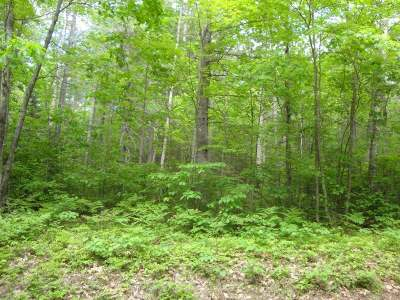 Rhinelander Residential Lots & Land For Sale: Lot 2 Cedar Ln