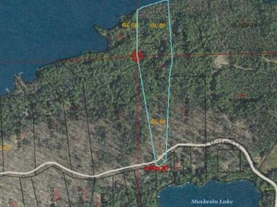 Vilas County Residential Lots & Land For Sale: Lot 6 Muskesin Easement Rd