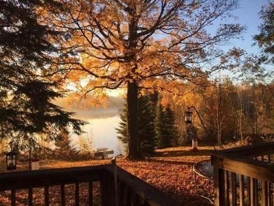 Aniwa, Elcho, Summit Lake, Bryant, Deerbrook, Elton, Lily, Pearson, Phlox, Pickerel, Polar, White Lake, Birnamwood Single Family Home For Sale: N9093 Chip N Dale Dr