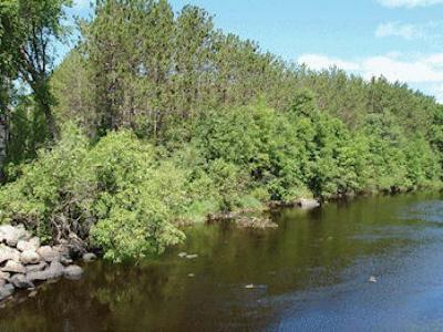 Fifield Residential Lots & Land For Sale: On Divine Rapids Rd