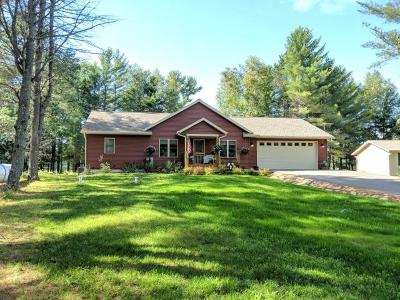 Eagle River Single Family Home For Sale: 1921 Blueberry Ln