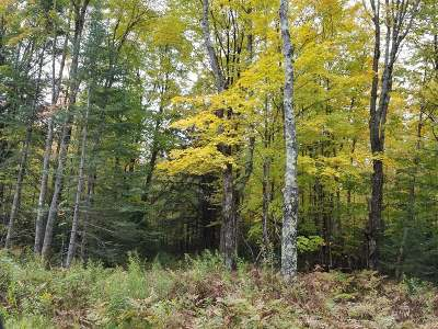 Residential Lots & Land For Sale: Lot 6 John Dul Rd