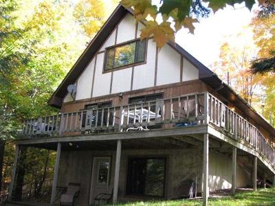 Watersmeet MI Single Family Home For Sale: $299,900