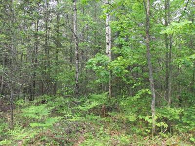 Residential Lots & Land For Sale: On Racine Ave #Lot9, 10