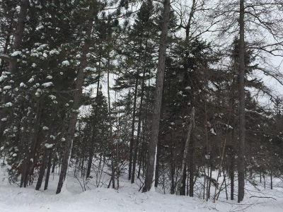 Residential Lots & Land For Sale: On Cth Y