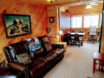 Forest County, Iron Wi County, Langlade County, Lincoln County, Oneida County, Vilas County Condo/Townhouse For Sale: 1733 Summer Dr #D
