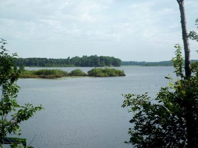 Crandon Residential Lots & Land For Sale: 11586 Waite Ln