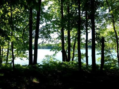 Park Falls Residential Lots & Land For Sale: On Letourneau Lake Rd N