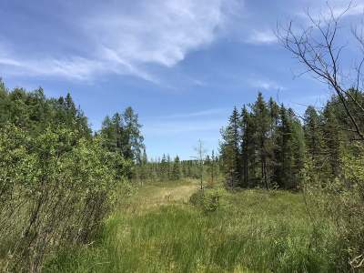 Tomahawk Residential Lots & Land For Sale: 40 Ac Nibler Rd