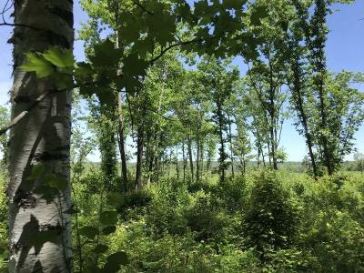 Tomahawk Residential Lots & Land For Sale: 80a Off Hwy 8