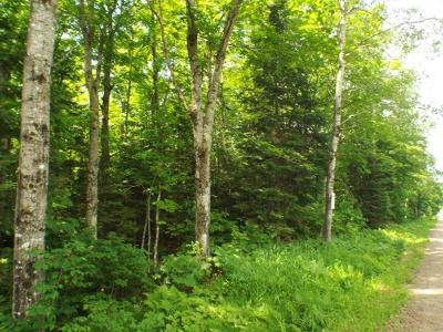 Residential Lots & Land For Sale: 2+ Acres Potawatomi Tr