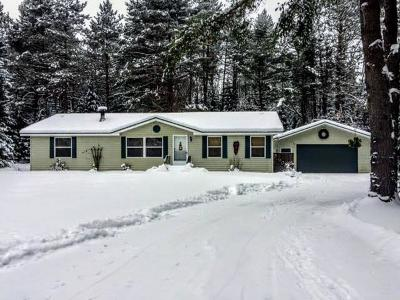 Eagle River Single Family Home For Sale: 5680 Boot Lake Rd