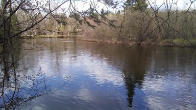 Residential Lots & Land For Sale: On River Rd #Lot 4