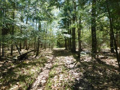 Tomahawk Residential Lots & Land For Sale: N7430 Hwy 107