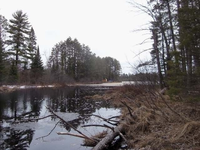 Residential Lots & Land For Sale: 3085w Grant Lake Rd