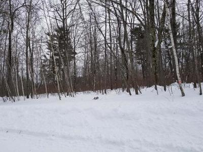 Rhinelander Residential Lots & Land For Sale: On Red Fox Run