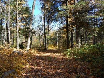 Residential Lots & Land For Sale: Lot 2 Many Rock Rd