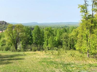 Residential Lots & Land For Sale: Off Moore St S