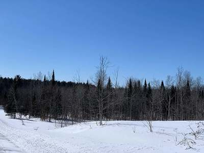 Residential Lots & Land For Sale: On Wolf Rd