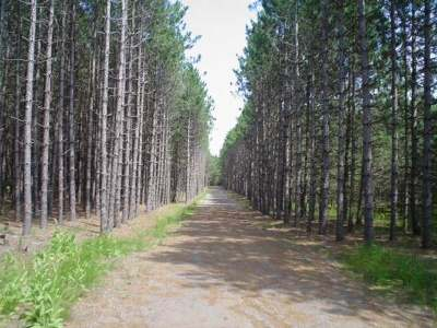 Eagle River WI Residential Lots & Land For Sale: $17,200