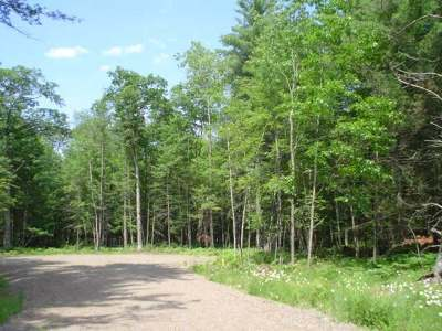 Eagle River WI Residential Lots & Land For Sale: $18,900