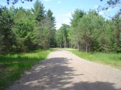 Eagle River WI Residential Lots & Land For Sale: $19,200