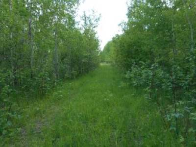 Phillips Residential Lots & Land For Sale: On Cth H