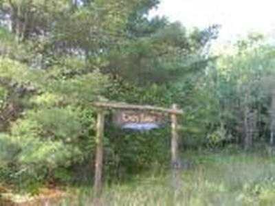 Residential Lots & Land For Sale: On Cth B #LOT 5