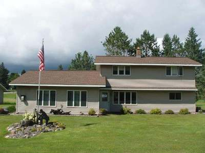 Price County Single Family Home For Sale: 570 9th St S