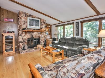 Vilas County Single Family Home For Sale: 9349 Spruce Dr