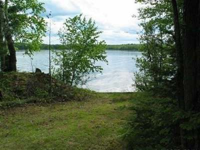 Pickerel Residential Lots & Land For Sale: 1133 Crane Lake Ln E