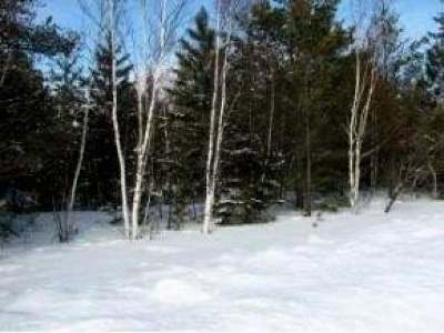 Vilas County Residential Lots & Land For Sale: 631 Dyer Farm Rd