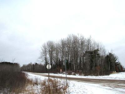 Merrill Residential Lots & Land For Sale: 4.4 Acre Cth E