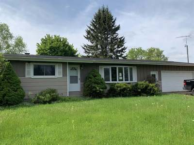 Antigo Single Family Home For Sale: W10103 Nickle Rd