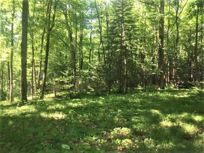 Price County Residential Lots & Land For Sale: W2335 Hwy 86