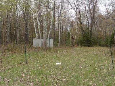 Crandon Residential Lots & Land For Sale: On Wolf River Dam Ln
