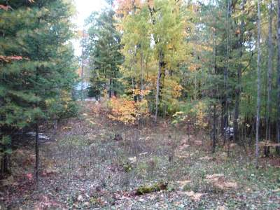 Rhinelander Residential Lots & Land For Sale: 6831 Pine Shadow Ln