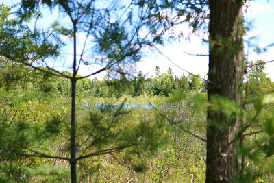 Residential Lots & Land For Sale: On Cth B