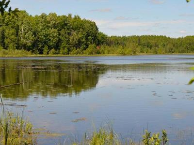 Residential Lots & Land For Sale: On Armstrong Creek Ct #LOT 68