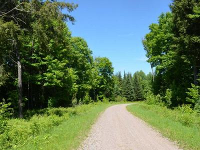 Residential Lots & Land For Sale: On Armstrong Creek Ct #LOT 69