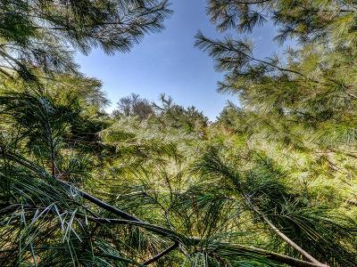 Eagle River Residential Lots & Land For Sale: Lot 1 Cth G