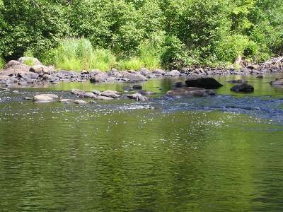 Rhinelander Residential Lots & Land For Sale: Lot 3 Ryan Rapids Bluff