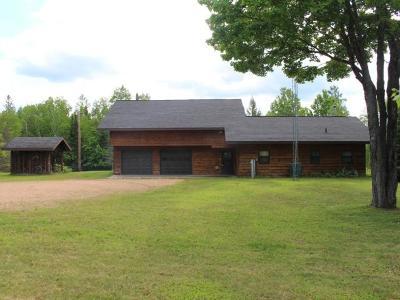 Phelps Single Family Home For Sale: 4090 Long Lake Dam Rd