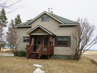 Antigo Single Family Home Active O/C: N3441 Langlade Rd