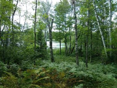 Residential Lots & Land For Sale: On Hunter Lake Rd
