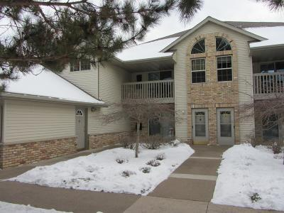 Minocqua Condo/Townhouse Active Under Contract: 8699 Richardson Plat Rd #1C